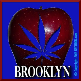 Brooklyn Marijuana Dispensaries