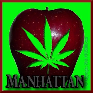 Manhattan Marijuana Dispensaries